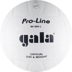 voley ball c303d